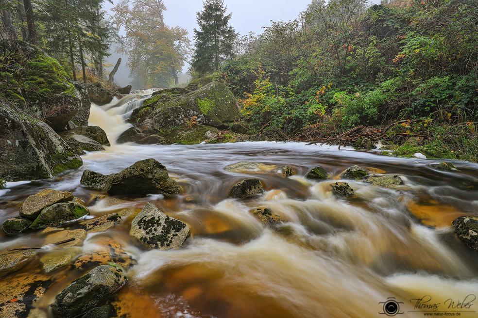 Herbstimpressionen aus dem Harz