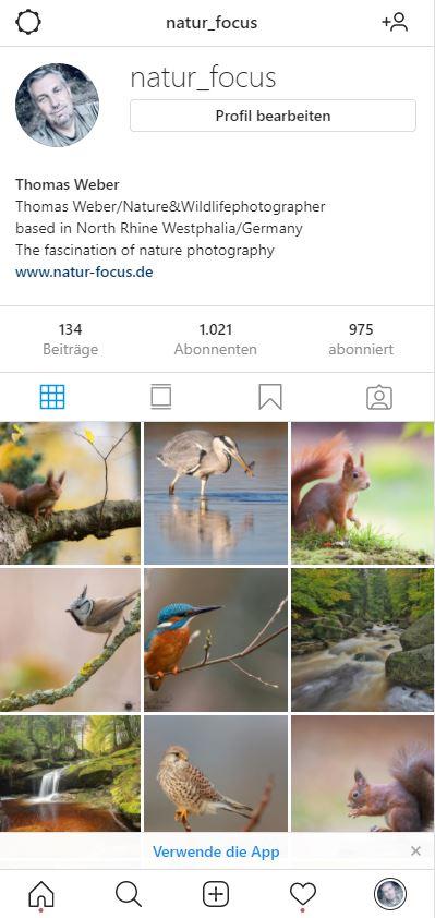 instagram – 1.000 Abonnenten…